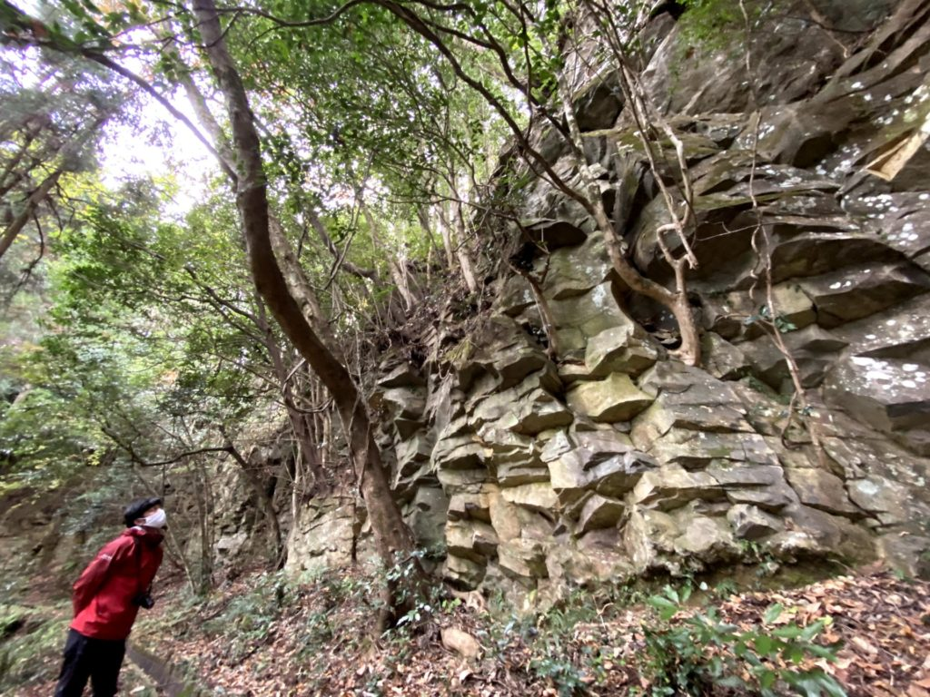 現地調査中に見た不思議な景色。バキバキに割れた崖