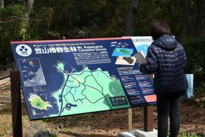 笠山椿群生林の解説板の写真01