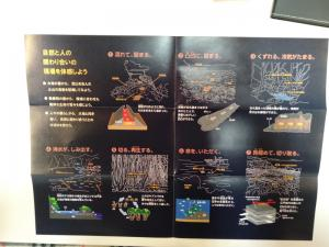 笠山椿群生林のリーフレットの写真02