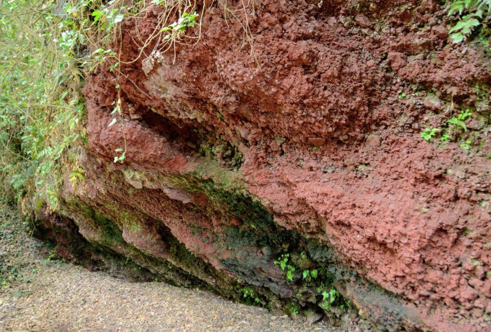 スコリア丘の火口内部に入ることができる「笠山山頂火口」