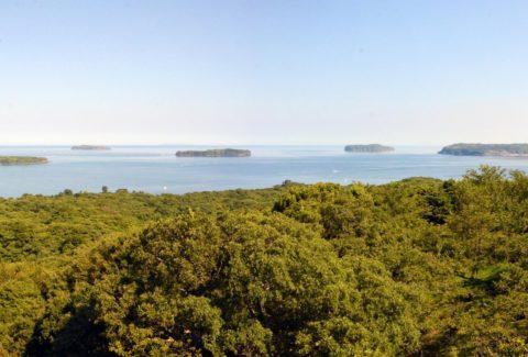 小規模の溶岩台地が点在する特徴的な地形「萩六島」