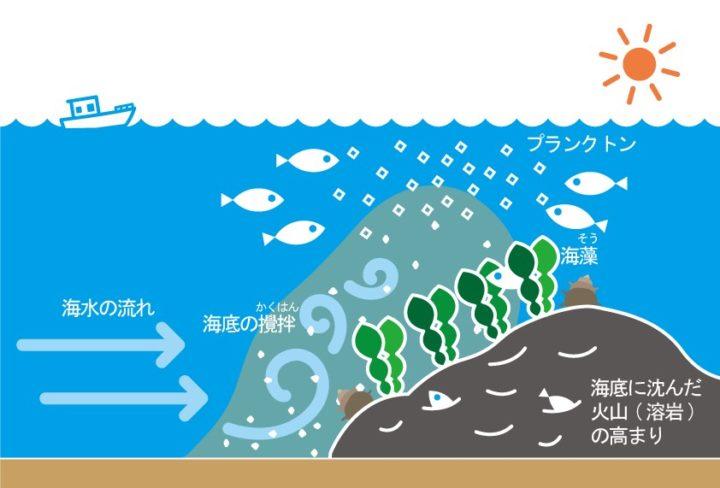 イラスト:溶岩と魚