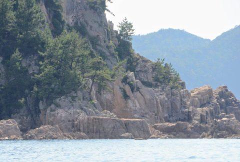 1億年前のマグマが生んだ白砂清松の写真