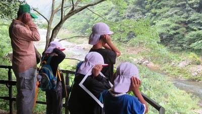 長門峡自然学習の写真01
