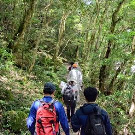 長門峡自然学習の写真02