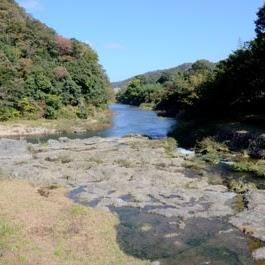 長門峡自然学習の写真05