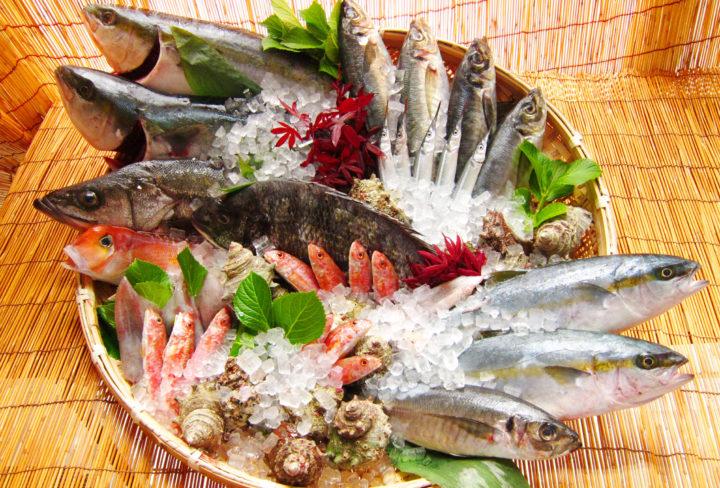 萩の魚介類の写真