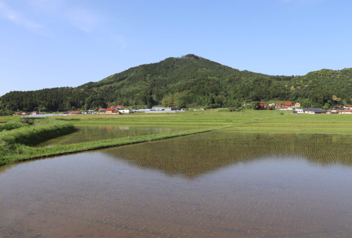 伊良尾山の写真