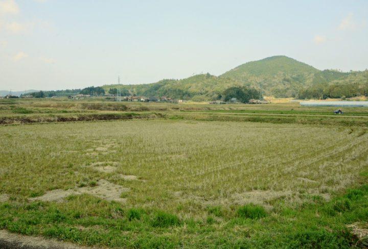 紫雲山・平原台の写真