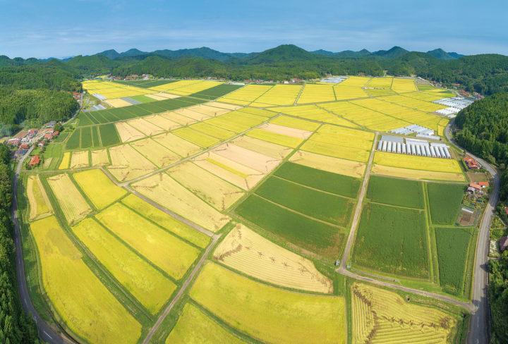 宇生賀盆地の写真